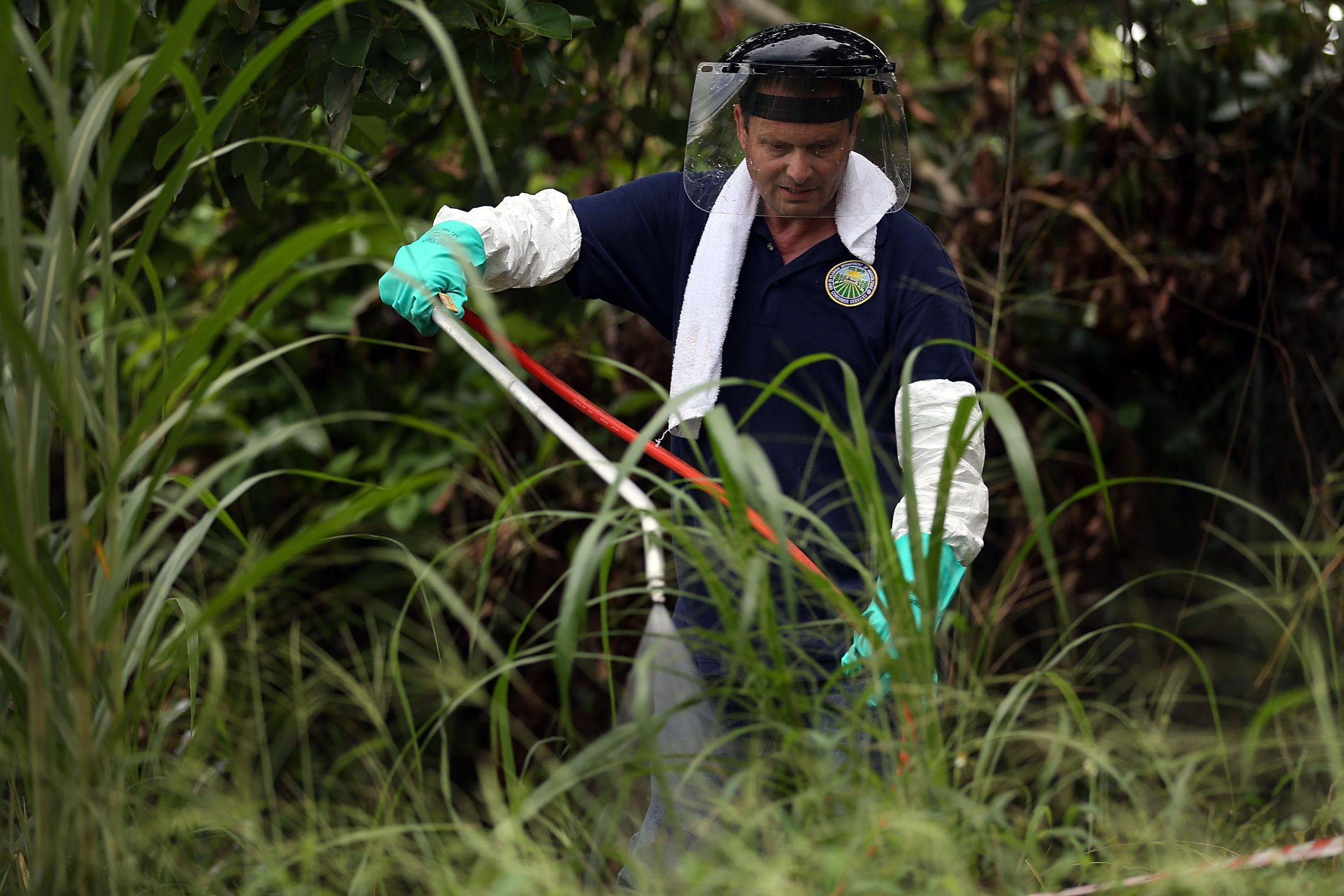 New study shows that, when it comes to pesticides and children, the EPA has looked the other way