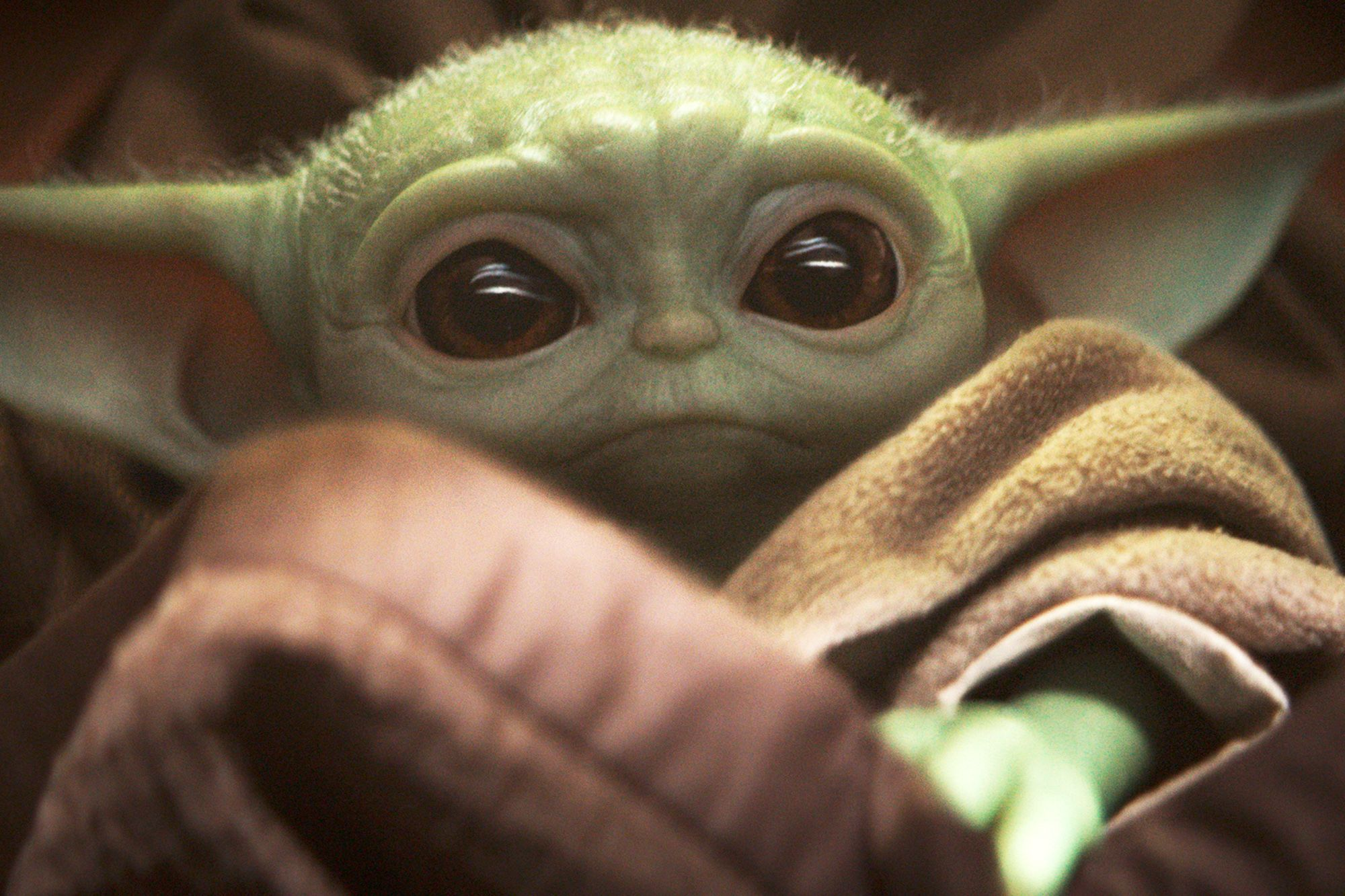 Child Yoda toy is not available in time for Christmas. Here because