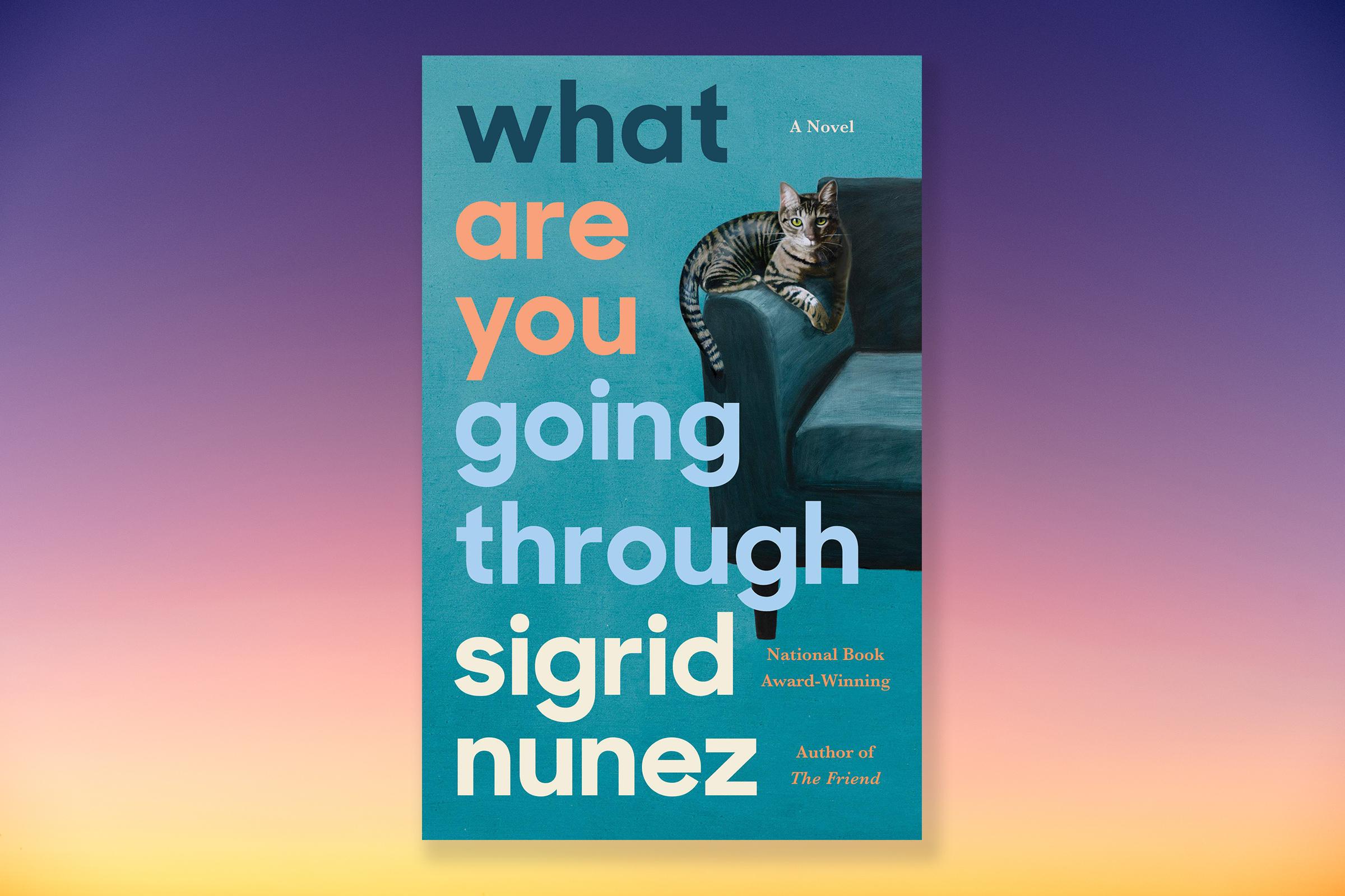 Sigrid Nunez new novel paints a beautiful portrait of grief and loss